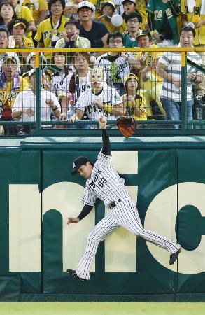12日の広島―阪神戦で飛球に飛びつく阪神の中堅手俊介。三塁打と判定された=甲子園