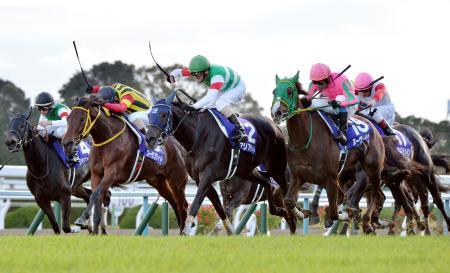 第40回エリザベス女王杯で優勝したマリアライト(左から3頭目)。同4頭目は2着のヌーヴォレコルト=京都競馬場