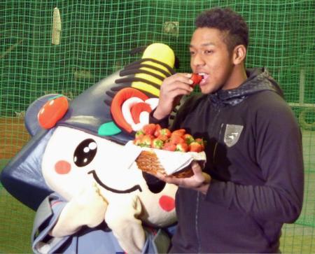 贈呈されたイチゴを頬張る楽天のオコエ瑠偉外野手=7日、仙台市