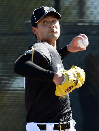 ブルペンで投球練習する日本ハム・ルーキーの上原=ピオリア(共同)