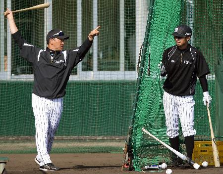 打撃練習で鳥谷(右)に指導する阪神・金本監督=宜野座