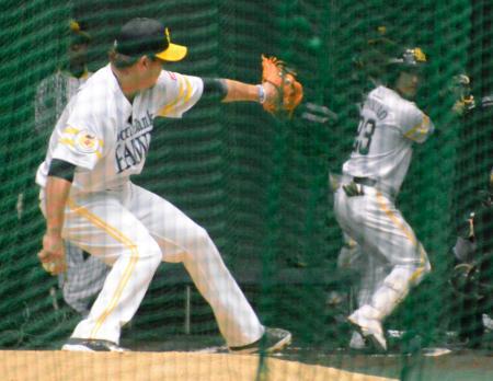 実戦形式で投球するソフトバンク・松坂(左)=宮崎アイビー