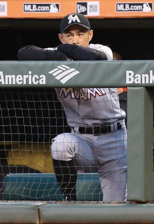 ジャイアンツ戦で出場機会がなく、ベンチから試合を見守るマーリンズのイチロー=サンフランシスコ(共同)