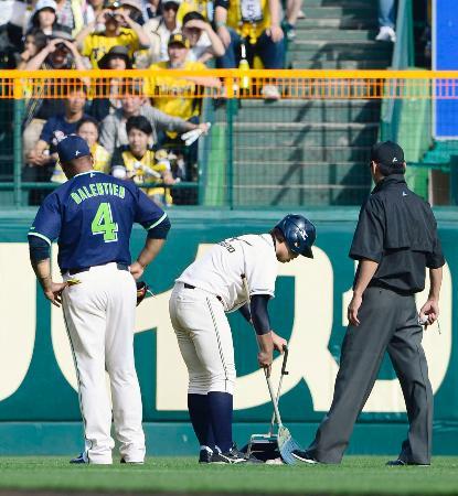阪神攻撃中の6回、グラウンドに落ちてきた魚の死骸を片付ける球場関係者。左はヤクルトの左翼手バレンティン=甲子園