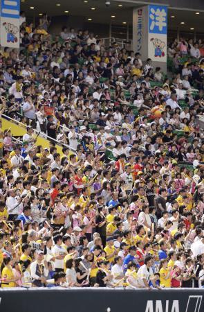 ヤフオクドームで声援を送るソフトバンクファン=10日、福岡市中央区