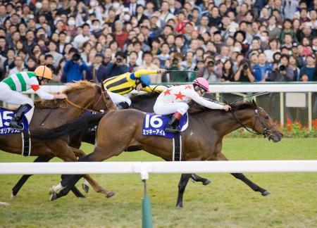 第33回マイルチャンピオンシップを制したミッキーアイル=京都競馬場