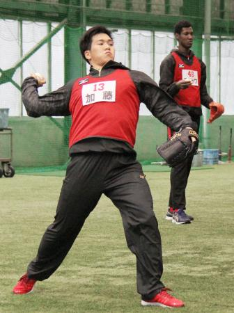 広島の新人合同自主トレで、キャッチボールするドラフト1位の加藤=広島県廿日市市