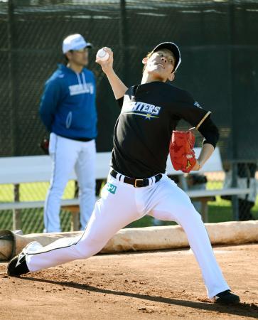 ブルペンで投球練習する日本ハム・高梨=ピオリア(共同)