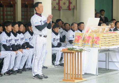 西宮神社を参拝し、必勝祈願する阪神・金本監督と選手ら=2日、兵庫県西宮市
