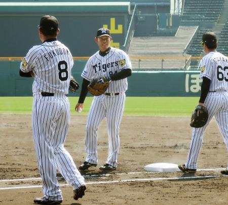 一塁の守備練習をする阪神・原口(中央)=甲子園