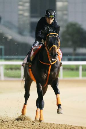 ジョアン・モレイラ騎手を背に調整するゴールドドリーム=24日、ドバイのメイダン競馬場(共同)