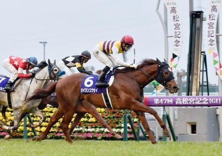 第47回高松宮記念を制したセイウンコウセイ(6)=中京競馬場