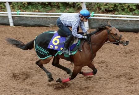 福永祐一騎手が騎乗し、パワフルな動きを披露したカデナ=栗東トレーニングセンター