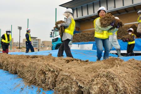 福島県のサッカー施設Jヴィレッジのグラウンドで始まった天然芝の張り替え作業=17日午前