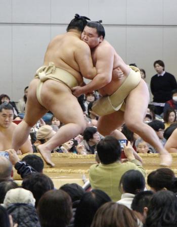 冬巡業の朝稽古で平幕正代関と相撲を取る横綱白鵬関(右)=8日、宮崎市