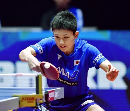 世界卓球団体の男子1次リーグのベルギー戦でプレーする張本智和=ハルムスタード(共同)
