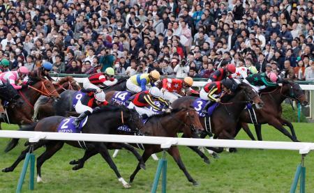 第35回マイルチャンピオンシップを制したステルヴィオ(手前左から2頭目)=京都競馬場