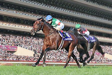 天皇賞・秋を制したレイデオロ(左)=10月、東京競馬場