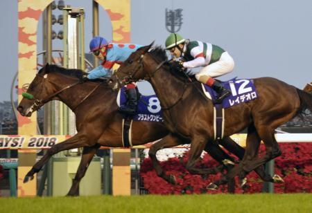 第63回有馬記念を制したブラストワンピース(8)。手前は2着のレイデオロ=中山競馬場