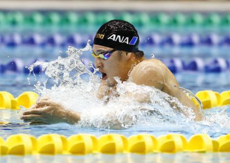 男子400メートル個人メドレー 優勝した瀬戸大也の平泳ぎ=千葉県国際総合水泳場