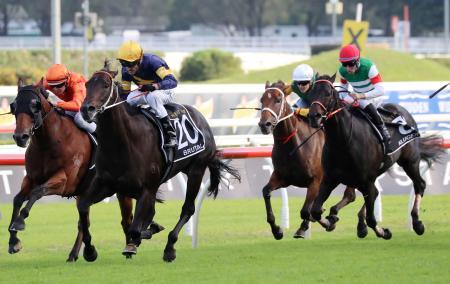 オーストラリア競馬のドンカスターマイルで優勝したブルータル(左から2頭目)、右端は4着に入ったクルーガー=ランドウィック競馬場(共同)