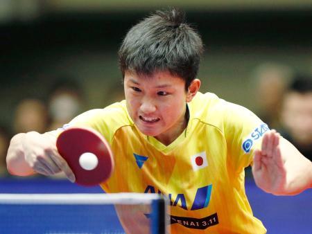 男子準決勝 中国選手と対戦する張本智和=横浜文化体育館