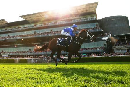 ランドウィック競馬場で行われたオーストラリア競馬のクイーンエリザベスステークス(G1)で優勝したウィンクス=13日、シドニー(ゲッティ=共同)