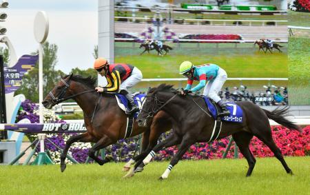 春の天皇賞を制したフィエールマン(左)。右は2着のグローリーヴェイズ=京都競馬場