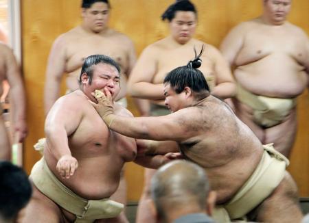 稽古で相撲を取る高安(右)と貴景勝=8日、千葉県松戸市の佐渡ケ嶽部屋