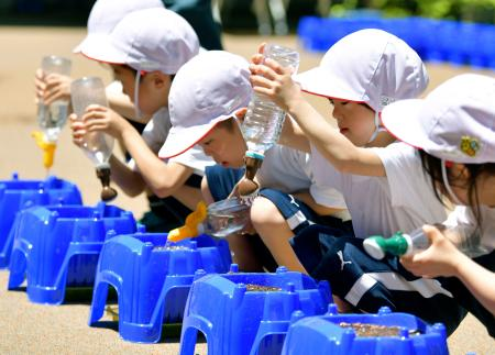 東京五輪・パラリンピックの競技会場入り口に鉢植えを並べるプロジェクトで、花の種まきをする子どもたち=24日午前、東京都江東区