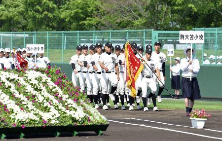 全国高校野球選手権大会の南北海道大会室蘭地区大会の開会式=2018年6月