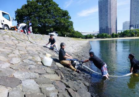 水質改善の実証実験で、海水を採取する「日本環境ビジネス機構」の職員ら=5日午前、東京・お台場
