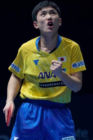 男子シングルス準々決勝で勝利した張本智和=23日、シンガポール(ゲッティ=共同)