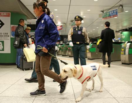 東京五輪・パラリンピックに向けた鉄道の安全対策強化で行われた実証実験で、新幹線改札付近を巡回する探知犬=4日午後、JR東京駅