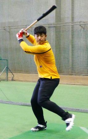 打撃練習を公開する巨人の岡本=川崎市のジャイアンツ球場