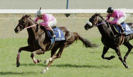 1996年、春の天皇賞を制したサクラローレル。右はナリタブライアン=京都競馬場