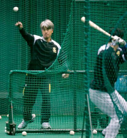 早出練習で打撃投手を務めたソフトバンクの城島会長付特別アドバイザー=宮崎