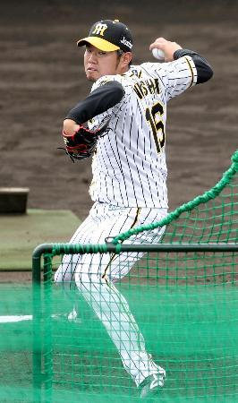 打撃投手を務める阪神・西勇=宜野座