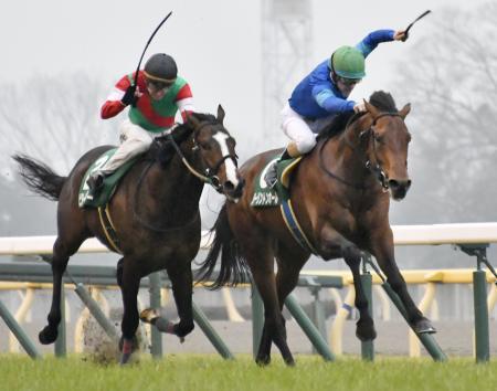 共同通信杯を制したダーリントンホール(右)と2着のビターエンダー=東京競馬場