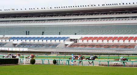 無観客で実施された日本中央競馬会のレース=29日午前、千葉県船橋市の中山競馬場