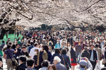 東京・上野公園で桜を楽しむ大勢の花見客=21日午後