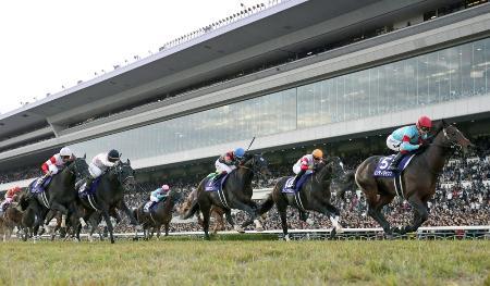 昨年11月にマイルチャンピオンシップが行われた京都競馬場=2019年11月