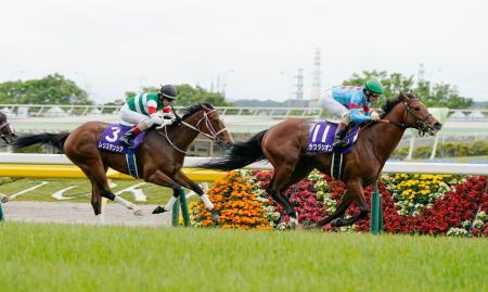 第25回NHKマイルカップで優勝したミルコ・デムーロ騎乗のラウダシオン。左は2着のレシステンシア=東京競馬場