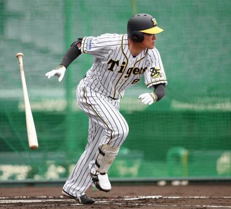 実戦形式の打撃練習で中前打を放つ阪神・福留=甲子園(球団提供)