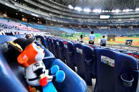 開幕戦を前に、客席に置かれたオリックスのマスコット人形=京セラドーム
