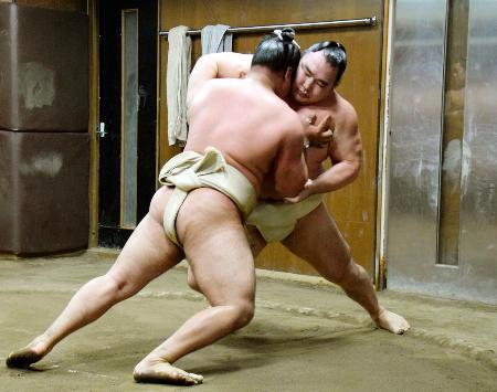 ぶつかり稽古で胸を出す鶴竜(奥)=9日、東京都墨田区の陸奥部屋(日本相撲協会提供)