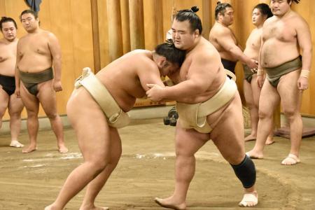 ぶつかり稽古で胸を出す琴奨菊(右)=20日、千葉県松戸市の佐渡ケ嶽部屋