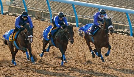 3頭併せで、追い切られるアーモンドアイ(右)=美浦トレーニングセンター