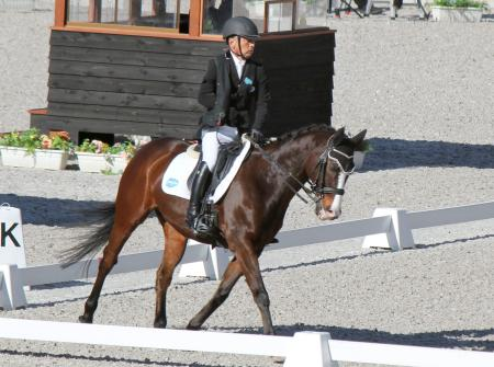 パラ馬術の全日本大会で個人規定の障害2を制した宮路満英=東京都世田谷区の馬事公苑