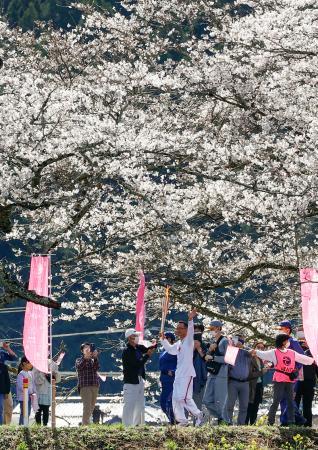 栃木県さくら市の桜並木を走る聖火ランナー=29日午前